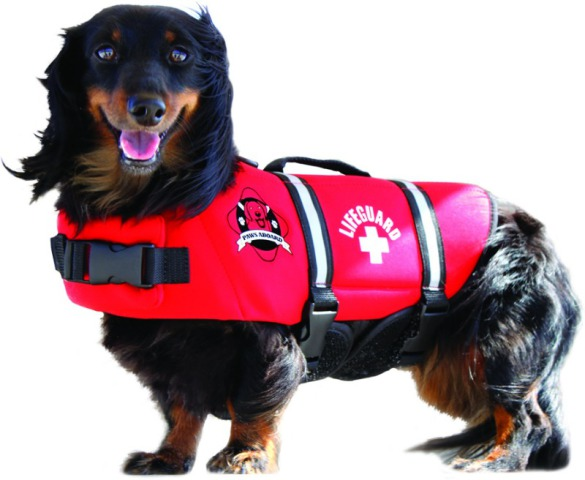 "Paws Aboard ""Red Lifeguard"" Dog Life Jacket"