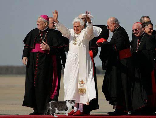 Pope Emeritus Benedict XVI, Cat Lover, with Gracey