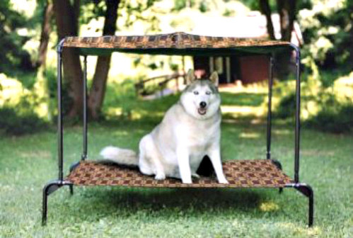 Puppywalk Ultra Royale: Elevated beds help keep pets pest free