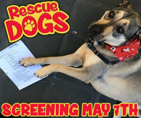 'Rescue Dogs The Movie': 'Rescue Dogs' film stars real rescue pets (image via Facebook)