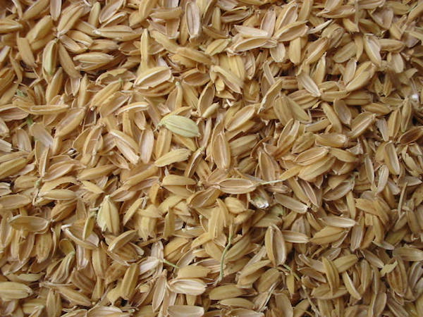 Natural rice hulls