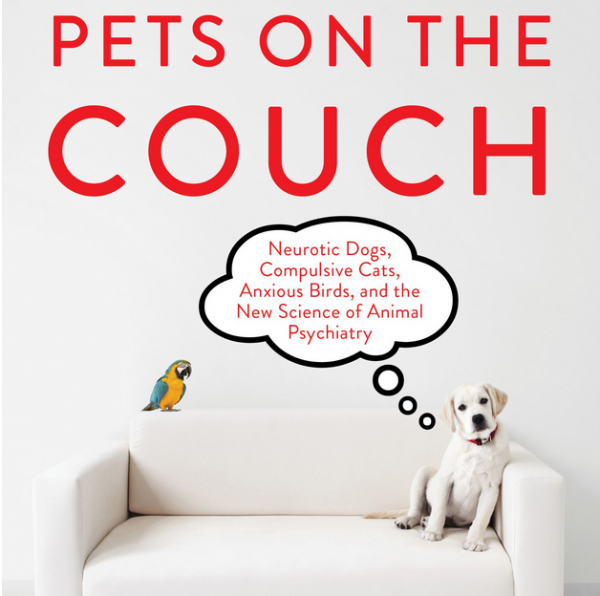 Pets On The Couch, The Shrinking Of Our Furry & Feathered Friends