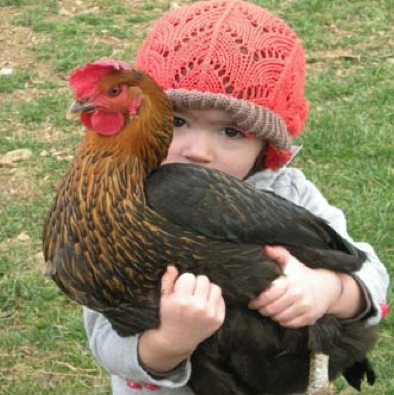 Chickens Can Be Pets Too
