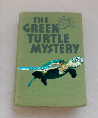 The Hunting Island Mystery Of The Green Turtle