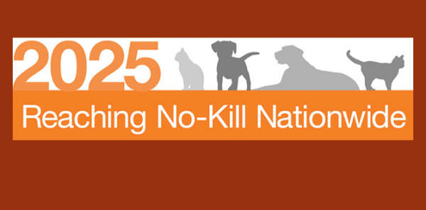 From No-Kill Centers to No-Kill Cities