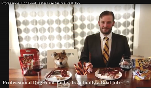 Dog food tester is a real job