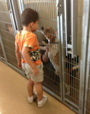 Chazz visits Rufus at the Orange County Animal Shelter