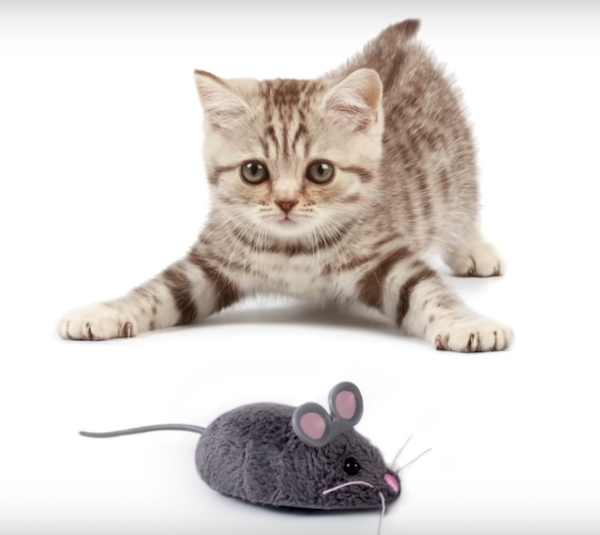 Hexbug Smart Mouse Cat Toy