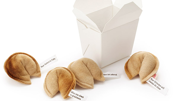 Take-out fortune cookies for cats