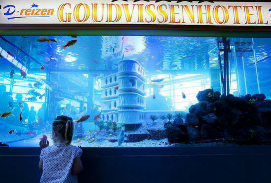 Goudvissen Hotel, exclusively for goldfish