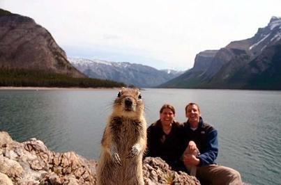 Crasher Squirrel - 1st Sighting!