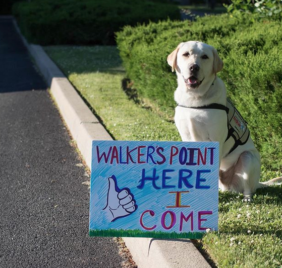Sully, The Presidential Internet Sensation Gets New Mission