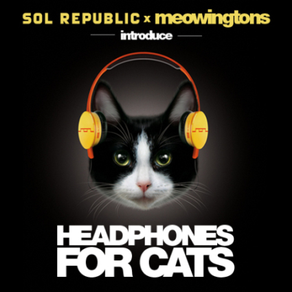 Headphones for Cats: © Sol Republic