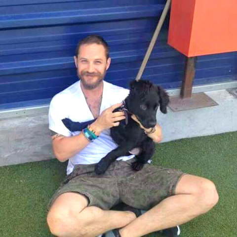 Tom Hardy and adorable puppy cuddling: Image via Tom Hardy Facebook
