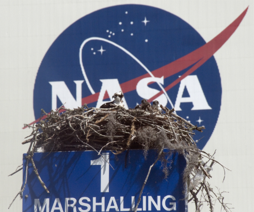 An Osprey Nest at NASA