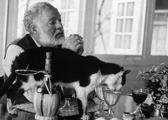 Heningway with One of his Cats