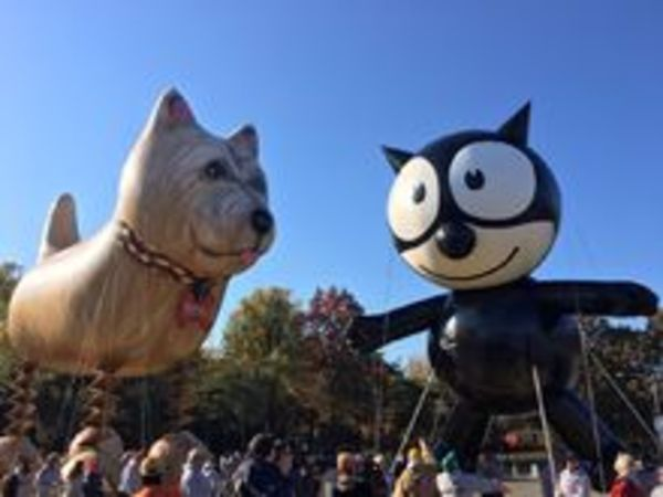 Trixie the Dog and Felix the Cat
