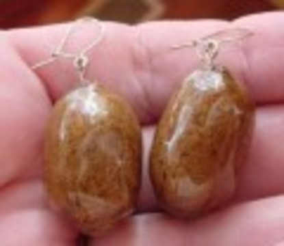Moose Poop Earrings