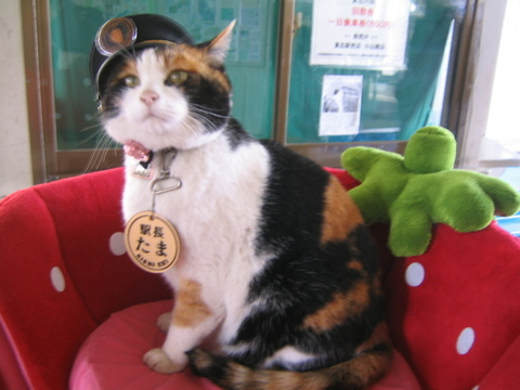 Tama the Railway Stationmaster (Photo by Sanpei/Creative Commons via Wikimedia)