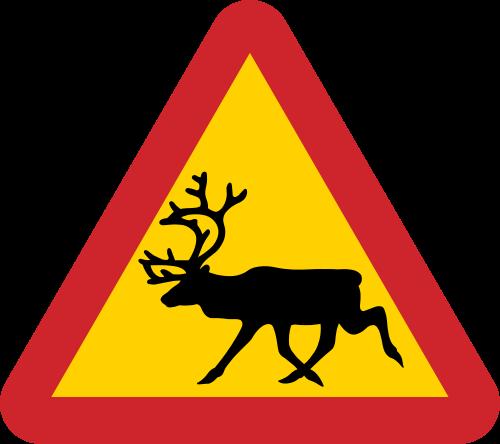 Reindeer Crossing Sign From Sweden