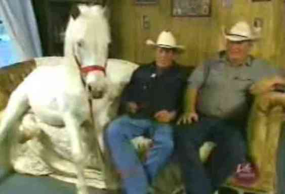 Patches Watches Television with Herbert and Robert (You Tube Image)