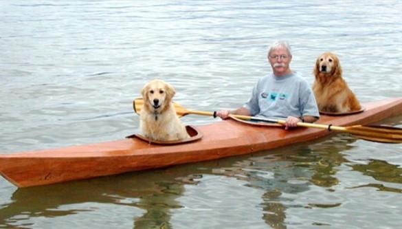 Kayaking Dogs