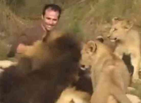 Kevin Richardson, The Lion Whisperer, and Friends (You Tube Image)