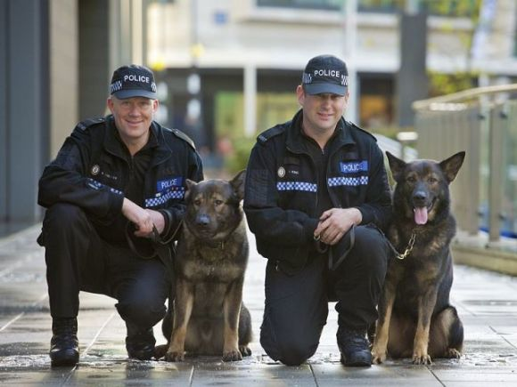 Police Dogs with the West Midlands Police Deparment, U.K. (Image via Creative Commons/Wikimedia)