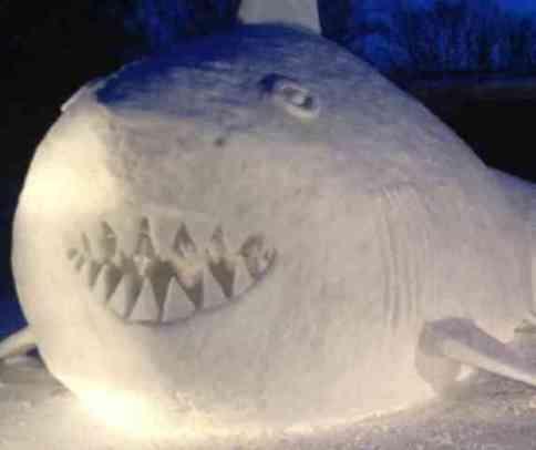 Snow Shark (You Tube Image)