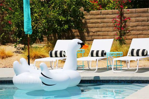 Giant Inflatable Swan