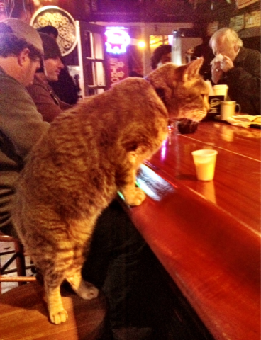 Mr. Wu at the Bar (Image via Mental Floss)