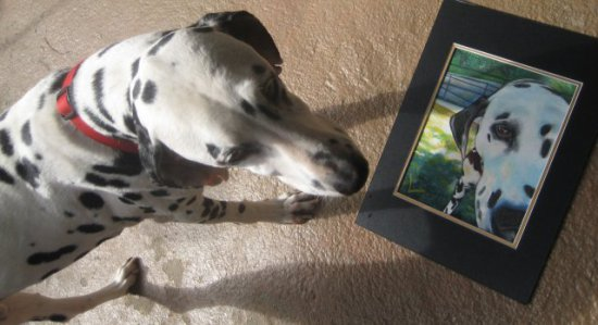 Admiring Moi by Daleo: Even her own dog enjoys the canine art of Nancy Daleo!