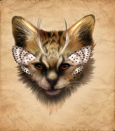 Butterfly Kitty by Kodriak: A rare combination to be sure.