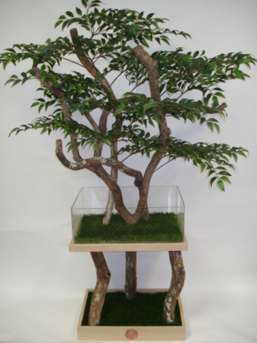Reptile Activity Tree: ©Pet Tree House, LLC