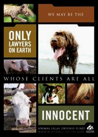 Animal Legal Defence Fund Poster: © ADLF