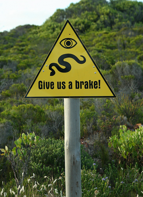 Snake Road Crossing Sign