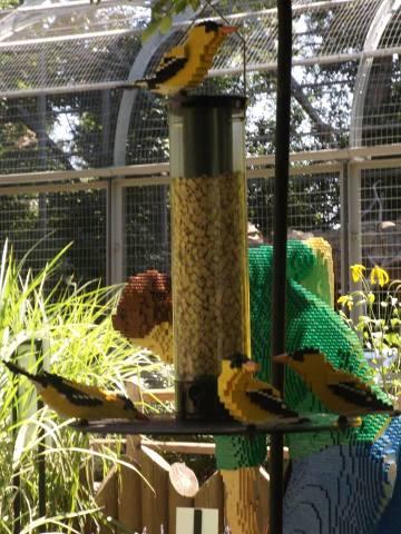 Little Lego Birds (Photo by Annie Bear)