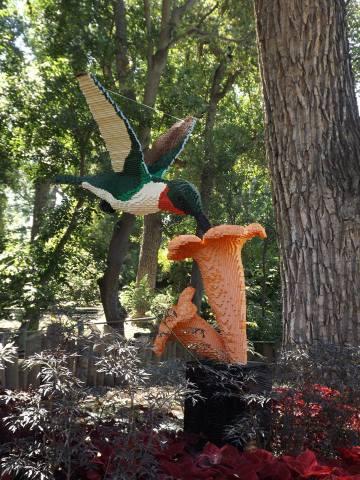 Lego Hummingbird (Photo by Annie Bear)