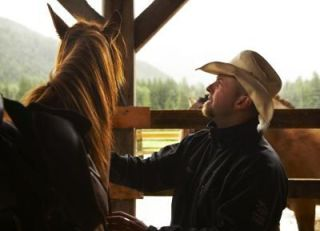 Is your horse getting adequate veterinary care?: image via e-how.com