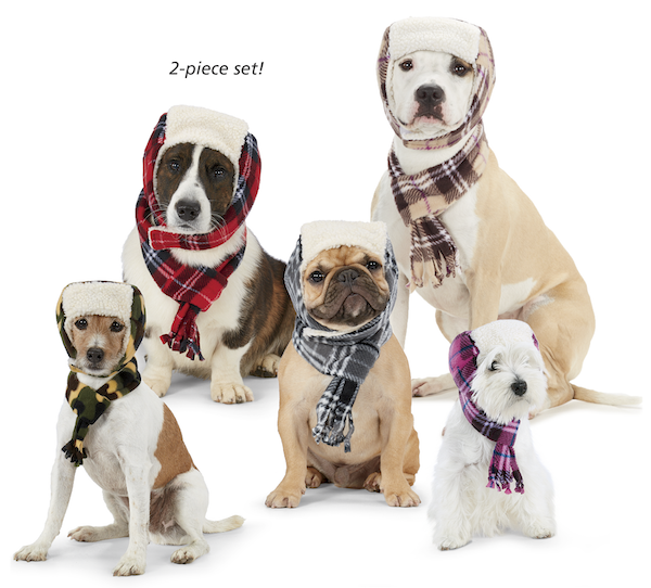 Canine Aviator Hat & Scarf Set