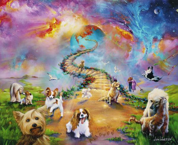 Is The Rainbow Bridge Heavenly Or One