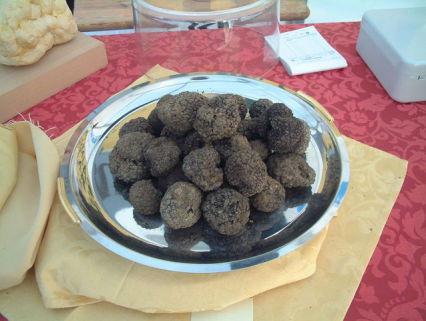 Black Truffles (Public Domain Image)