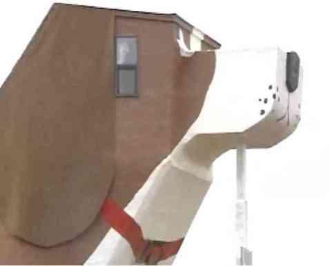 Dog Bark Park Inn Bed and Breakfast (You Tube Image)