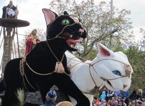 Kattenstoet: The Festival Of Cats In Belgium (Photo by Zeisterre/Creative Commons via Wikimedia)