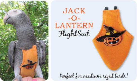 Jack-o-Lantern FlightSuit