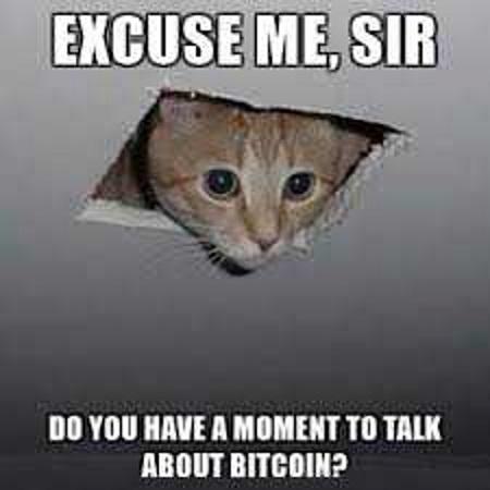 bitcoin-pet-meme-4.jpg