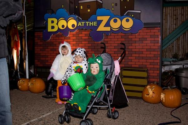 Kids as Animals at Boo at the Zoo