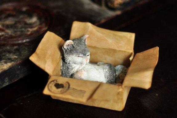 Enchanted Story Garden Messenger Kitten