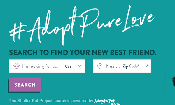The Shelter Pet Project introduces you to pets in your area