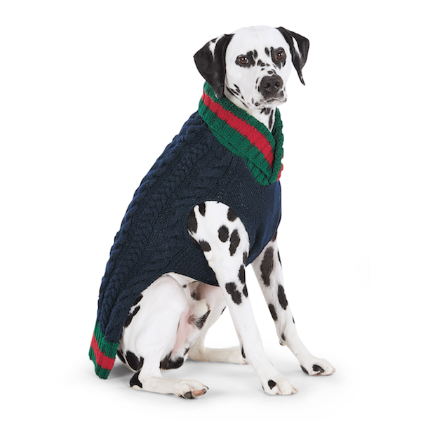Varsity Wool Dog Sweater
